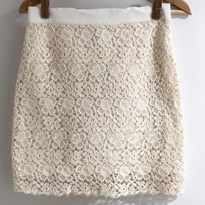 LOFT Lace Skirt with Zip
